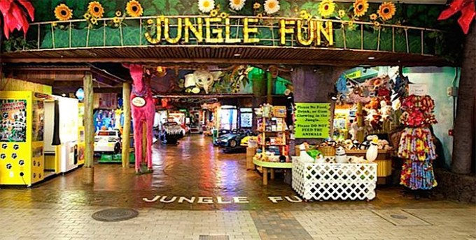 Jungle Fun(ジャングル・ファン)
