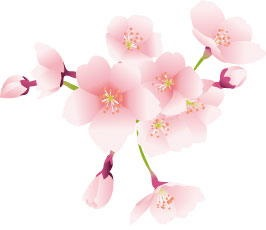 桜の開花宣言の基準になる標本木はどこにある?開花予想はいつから?