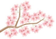 高遠の桜の開花予想や混雑状況は?高遠城址公園へのアクセスや駐車場は?
