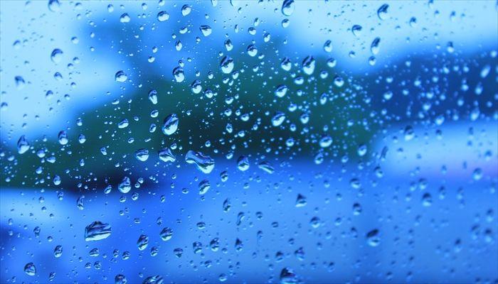 梅雨 過ごし方