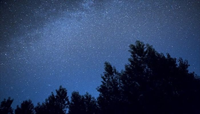 秋にしたいこと 秋の星座を見る