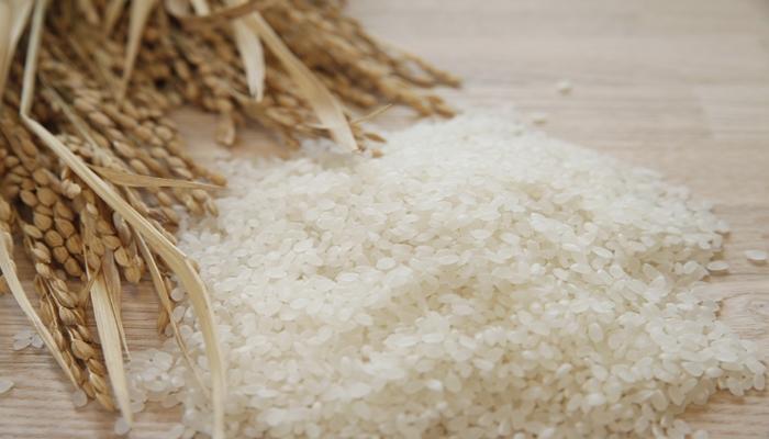 米 賞味期限