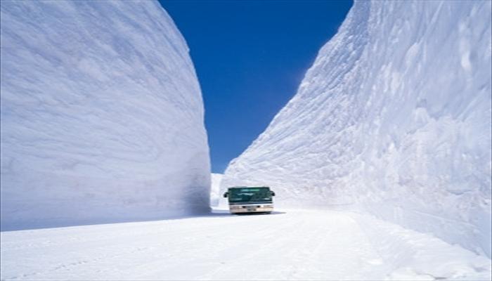 冬にしたいこと 雪の壁を見に行く