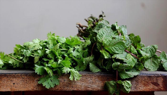 葉野菜 保存 つるむらさき