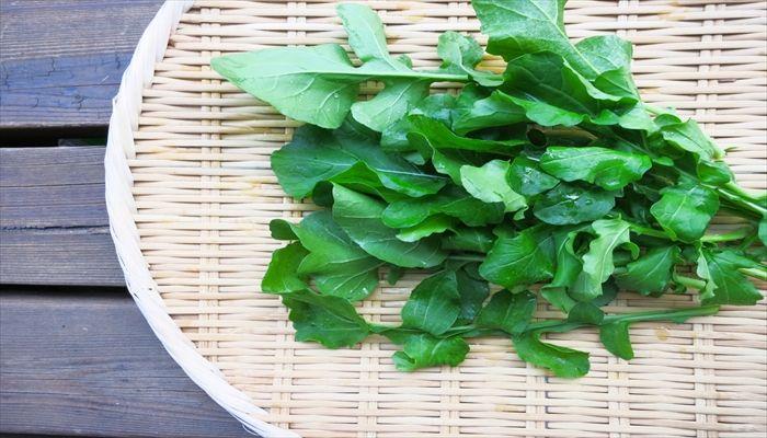葉野菜 保存 ルッコラ