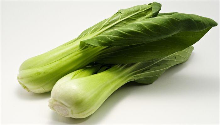 葉野菜 保存 チンゲン菜
