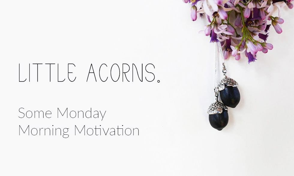 Little Acorns – Some Monday Morning Motivation