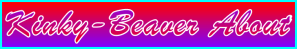 Kinky-Beaver About Page Title Edit - Navigation Support Banner
