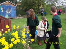 Eco Day May 2013