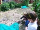 Gardening Club June 2013