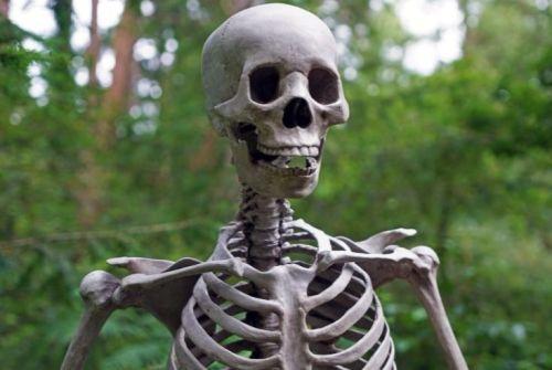 筋トレを始める前は体はガリガリ、顔つきは死人の様でした。