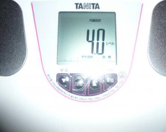 2ヶ月目に突入の内臓脂肪レベル