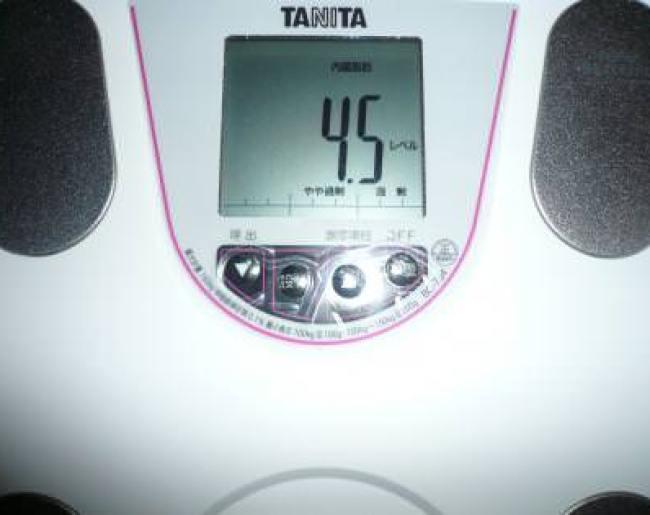 2ヶ月半目突入の内臓脂肪レベル