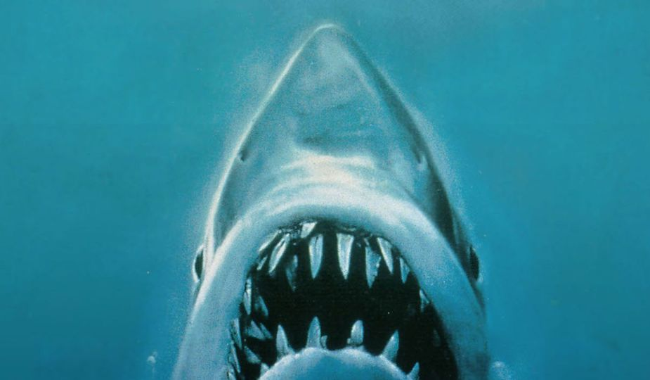 Oficjalny plakat filmu Szczęki Stevena Spielberga z 1975
