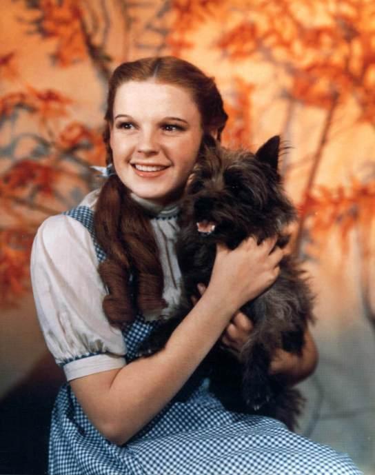Judy Garland jako Dorotka wCzarnoksiężniku zOz