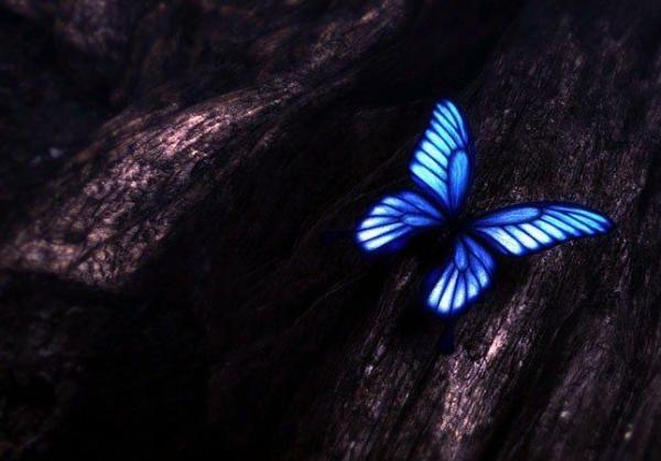 Эпоха дракона: Рождение Искательницы 2012 смотреть онлайн ...