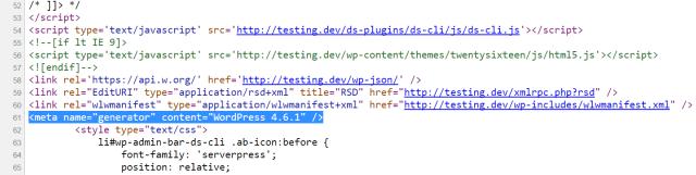 wordpress version source code