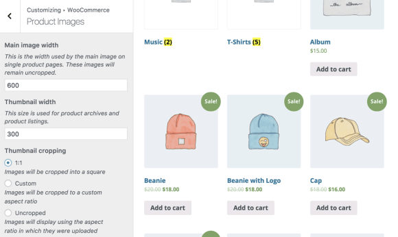 Customizing WooCommerce's Product Images through the WordPress Customizer