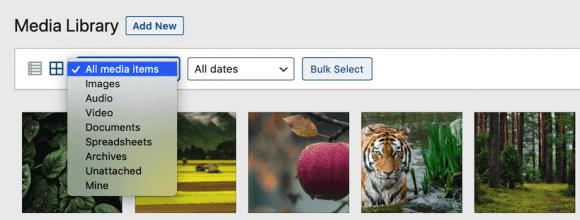Filtering WordPress Media Library files
