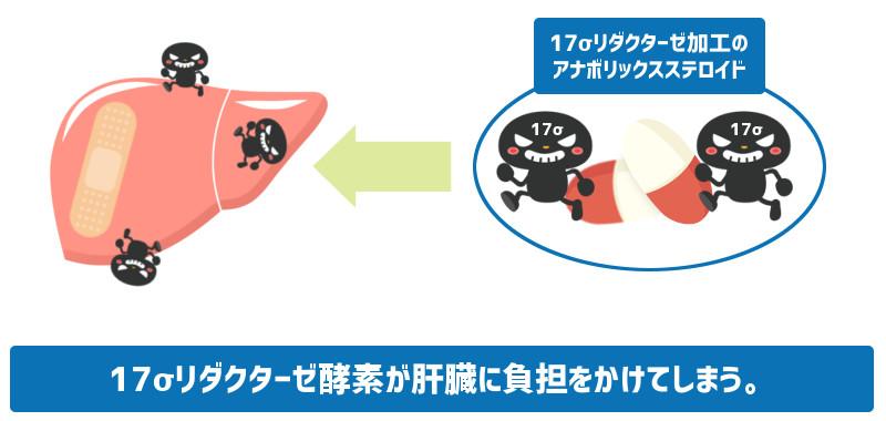 アナボリックステロイドを使用中に副作用として出る可能性のある肝臓機能の低下