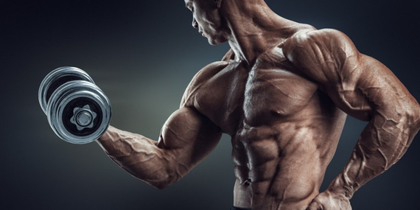 筋肉増強剤の選び方