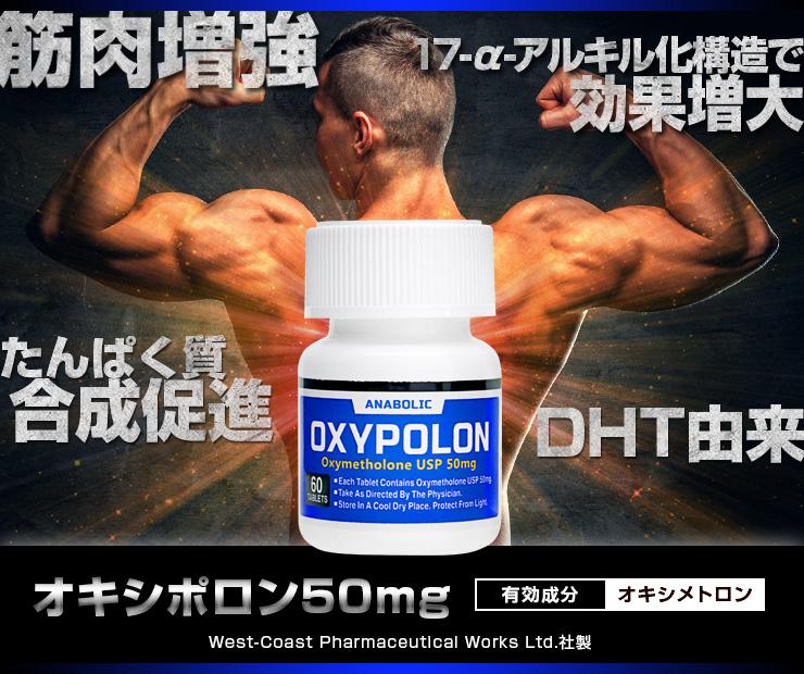 オキシポロン 筋肉に即効性の効果!正しい飲み方を徹底解説!
