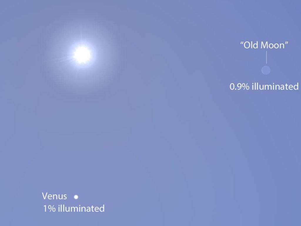 Venus nap