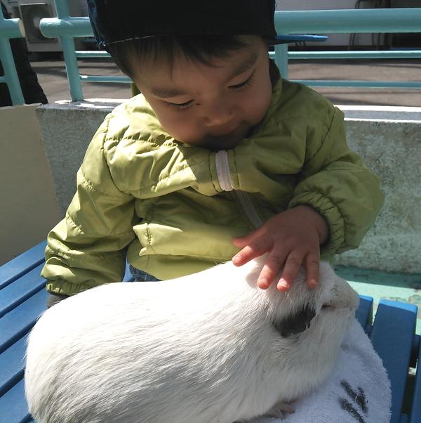 板橋こども動物園