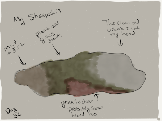 Sketch and watercolors. Light brown background with a blobby shape taking up most of the middle. The blobby shape is brown at the leftmost edge, then green, then some red near the bottom, then grey. It is labeled (left to right) My sheepskin, mud and dirt, plant and grass stains, granite dust, probably some blood too, the clean end where I set my head.
