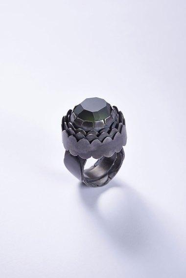 Fritsch_ring8