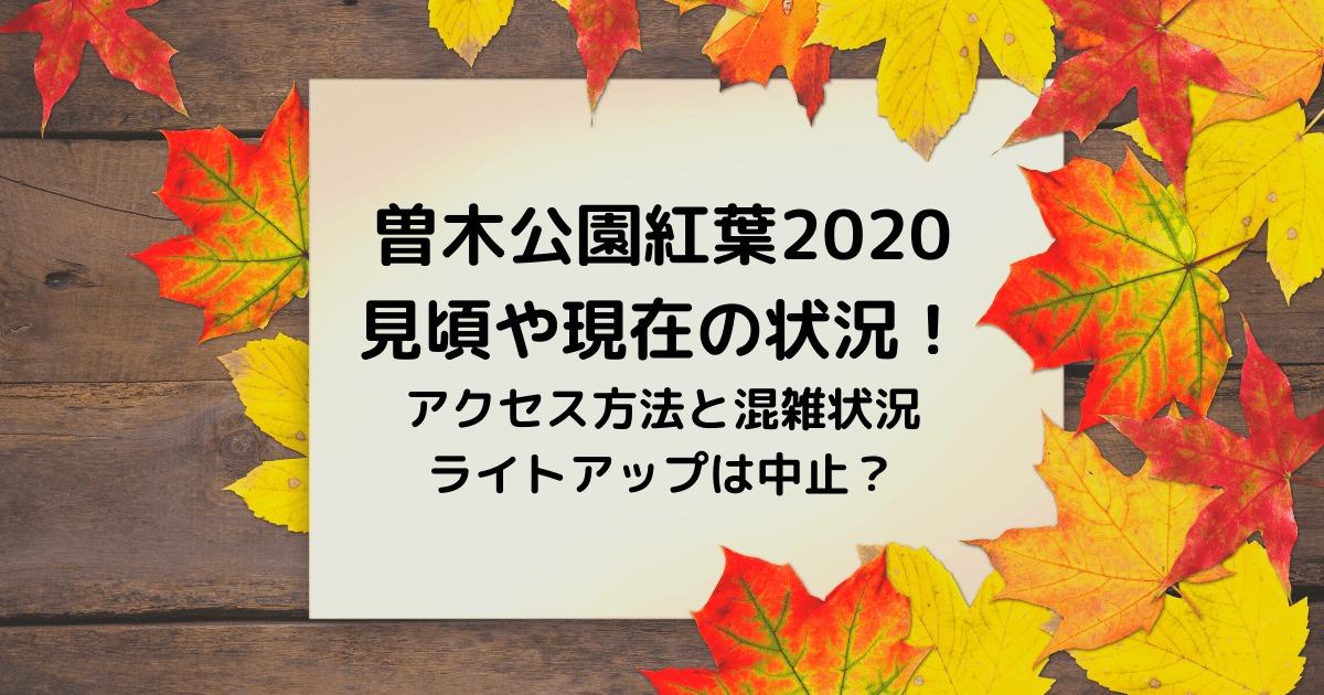 曽木公園紅葉2020見頃や現在の状況!アクセス方法と混雑状況、ライトアップは中止?