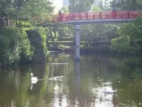 撮影現場側から橋を撮影。