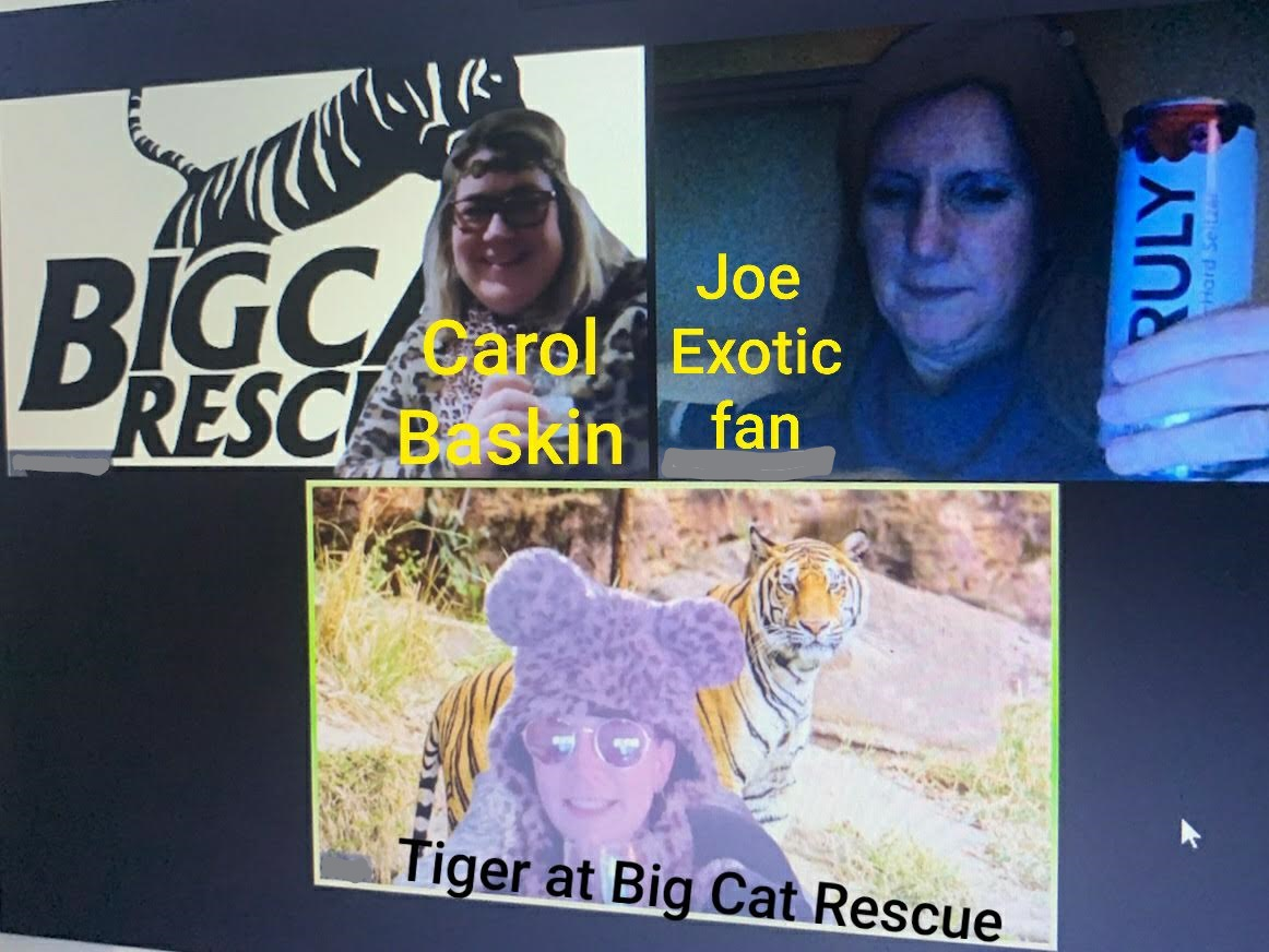 Tiger KING Character theme College of St Rose Virtual Happy Hour
