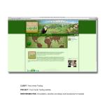 Terra Verde Trading website