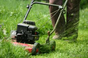 mowing the tall grass