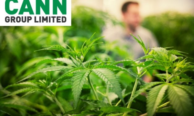 "Incident: Medicinal cannabis company Cann Group loses $3.6 million in ""sophisticated"" cyber attack 