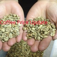 Coffee Prices (Kodagu) on 29-01-2020