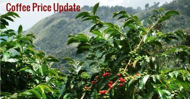 Coffee Prices (Karnataka) on 14-12-2019