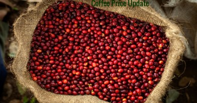 Coffee Prices (Karnataka) on 18-07-2019