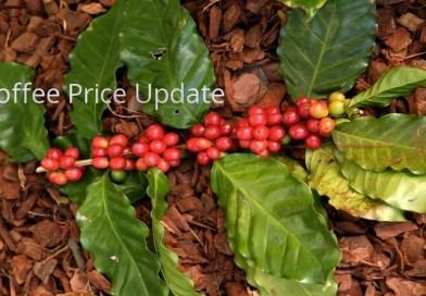 Coffee Prices (Karnataka) on 21-03-2019