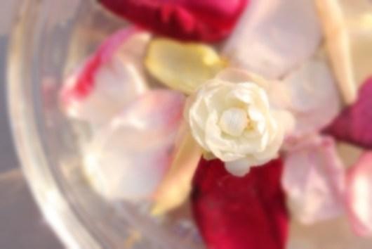 水に浮かべたバラ花弁2