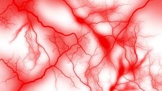 毛細血管はヒハツでゴースト化改善&若返り【主治医が見つかる診療所】