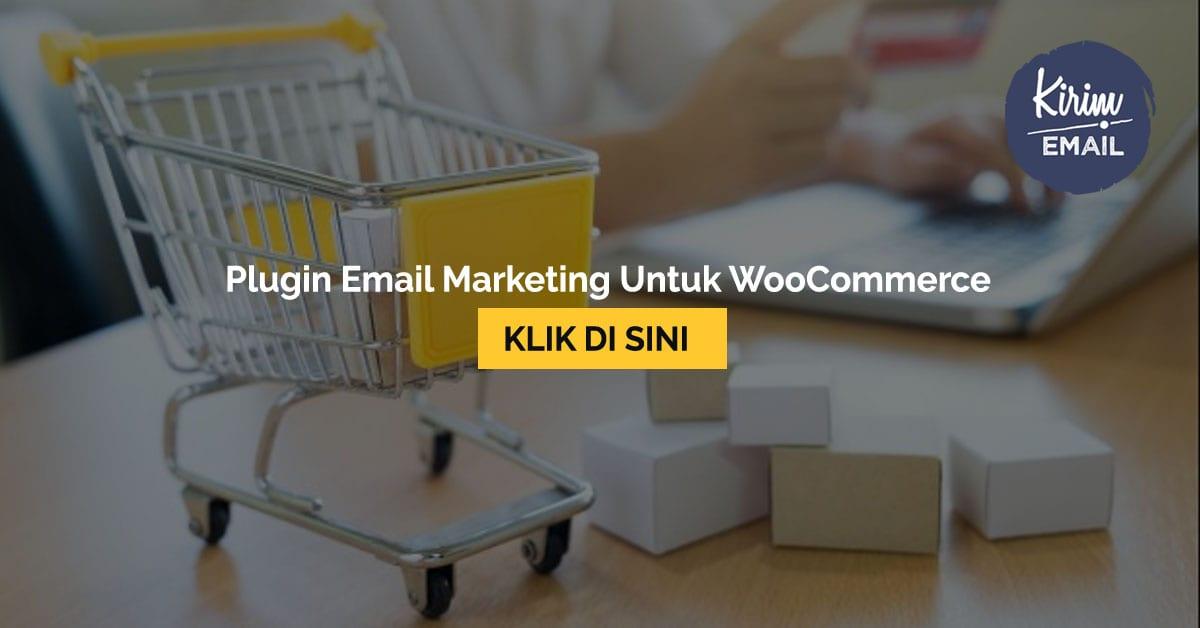 Plugin Email Marketing Untuk WooCommerce