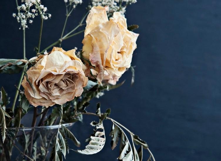 Keltaisia, kuolleita ruusuja maljakossa.