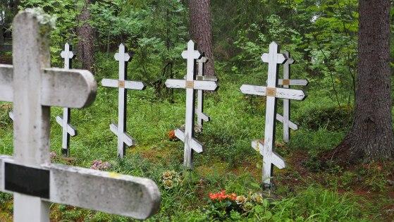 Valkoisia hautaristejä Pörtsämön erämaakalmistossa.