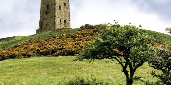A photo of the Victorian Tower at Castle Hill. The tower is at the top of a hill, with the photo take looking up hill, and in the foreground are green fields and small trees