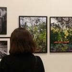 New exhibition at Batley Art Gallery
