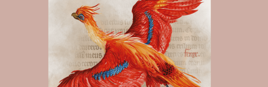 Harry Potter - phoenix