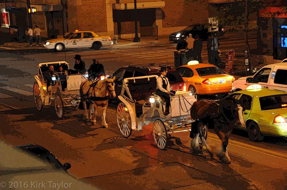 Taking a horse and carriage ride