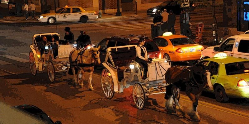 Take a horse and carriage ride